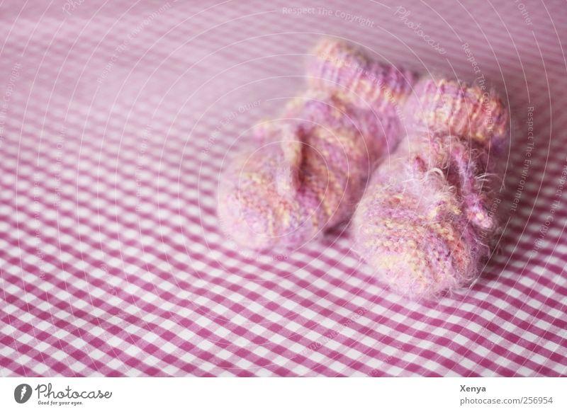 Warmes für kleine Füsse Mädchen rosa Baby weich Geborgenheit kuschlig Wolle Schwache Tiefenschärfe gestrickt Mensch