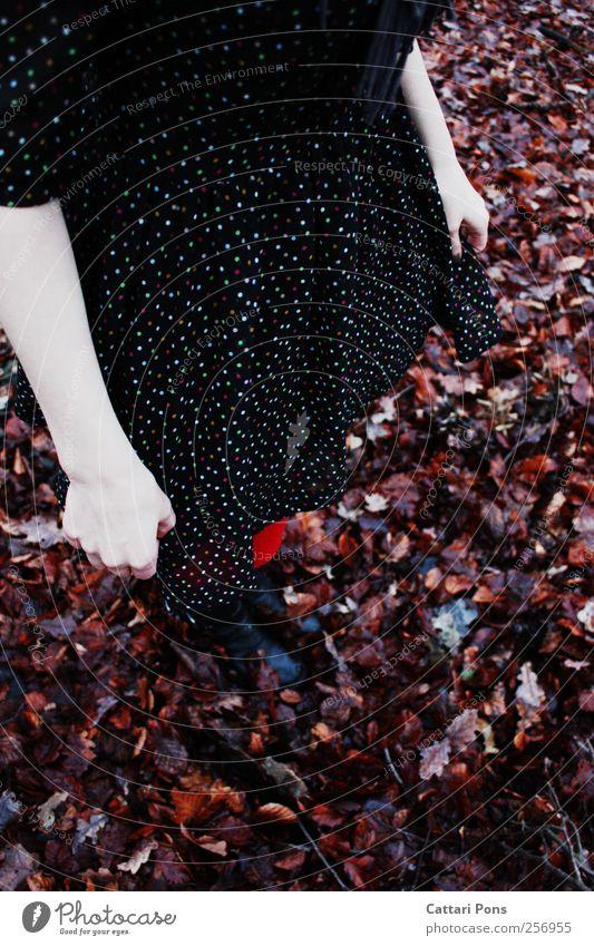 Autumn's Child feminin Junge Frau Jugendliche Erwachsene 1 Mensch Umwelt Herbst Kleid Strumpfhose Stiefel berühren festhalten stehen schön einzigartig dünn