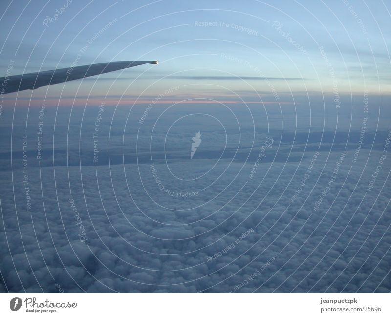 Flug nach London Himmel Sonne Wolken Fenster Flugzeug Luftverkehr Tragfläche Heck