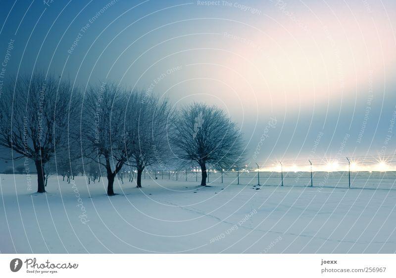 Wir müssen leider draußen bleiben Landschaft Himmel Nachthimmel Horizont Winter Schnee Baum Park Dorf Stadtrand Skyline Menschenleer kalt blau rosa schwarz weiß