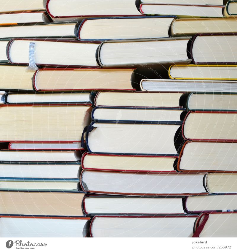 Wissensspeicher Buch Bibliothek lesen Lesezeichen Papier klug Bildung Idee Inspiration Konzentration Kultur lernen Schule Stapel Wissenschaften Farbfoto