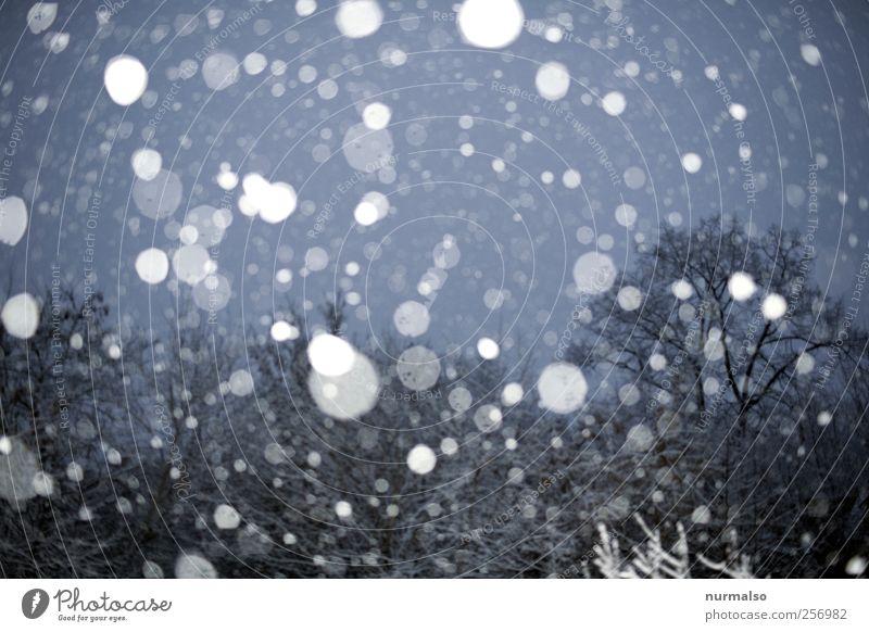Simulation Natur schön Winter kalt Schnee Landschaft Schneefall Stimmung Park Wetter glänzend frisch Klima fallen frieren Nachthimmel