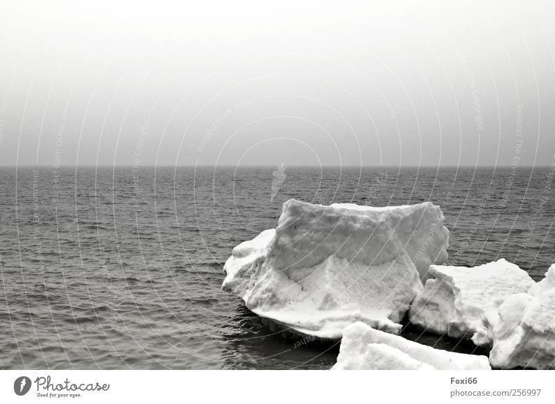 Winter an der Ostsee Luft Wasser Wolkenloser Himmel Horizont Nebel Eis Frost Schnee Küste Menschenleer Bewegung frieren Ferien & Urlaub & Reisen außergewöhnlich