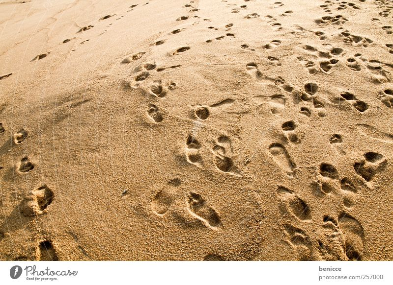 chaos Ferien & Urlaub & Reisen Strand Bewegung Sand Hintergrundbild gehen Fußspur chaotisch Sandstrand
