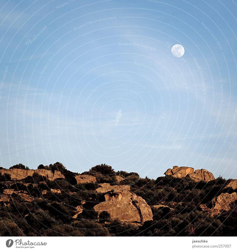 Mondlandschaft Natur Umwelt Landschaft Stein Erde Felsen außergewöhnlich trist Sträucher Hügel Schönes Wetter Steppe Wolkenloser Himmel karg Geröll