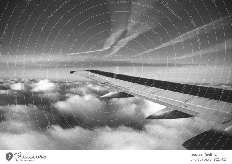 air Tragfläche Wolken Luft weich Luftverkehr Schwarzweißfoto Himmel