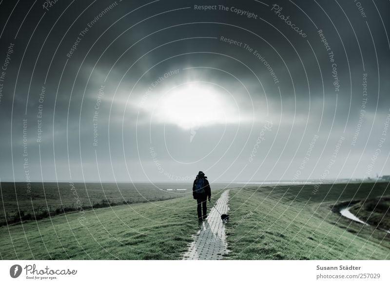 ||800|| great times Mensch Himmel Natur Sonne Wolken Herbst Wiese Hund Landschaft Küste Wetter laufen maskulin Insel Klima Spaziergang
