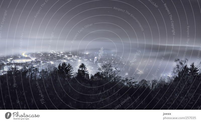 Stadtnebel Himmel Nachthimmel Nebel Wald Stadtrand Skyline dunkel grau schwarz weiß Energie kalt Beleuchtung Vogelperspektive leuchten Farbfoto Gedeckte Farben