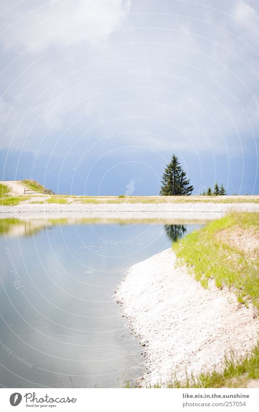feuchter traum Ferien & Urlaub & Reisen Sommer Wasser Erholung Landschaft ruhig Wolken Ferne Berge u. Gebirge Umwelt Freiheit Schwimmen & Baden See gehen