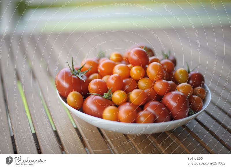 Erntedank grün rot gelb Ernährung Lebensmittel elegant liegen Tisch authentisch einzigartig Warmherzigkeit Gemüse Teller Duft Bioprodukte Tomate