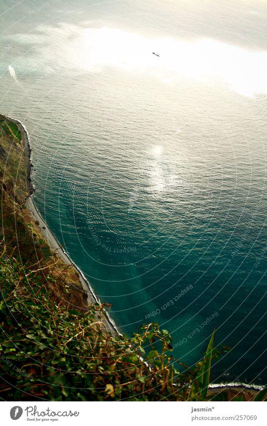 Madeirensische Steilküste Umwelt Natur Landschaft Erde Wasser Wind Pflanze Felsen Bucht Gefühle Stimmung Farbfoto mehrfarbig Außenaufnahme Menschenleer Tag