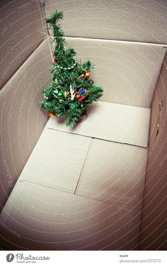 Nu aber raus! grün Weihnachten & Advent Baum lustig klein stehen Dekoration & Verzierung niedlich Kreativität Geschenk Kunststoff Umzug (Wohnungswechsel) Weihnachtsbaum Überraschung Karton Vorfreude