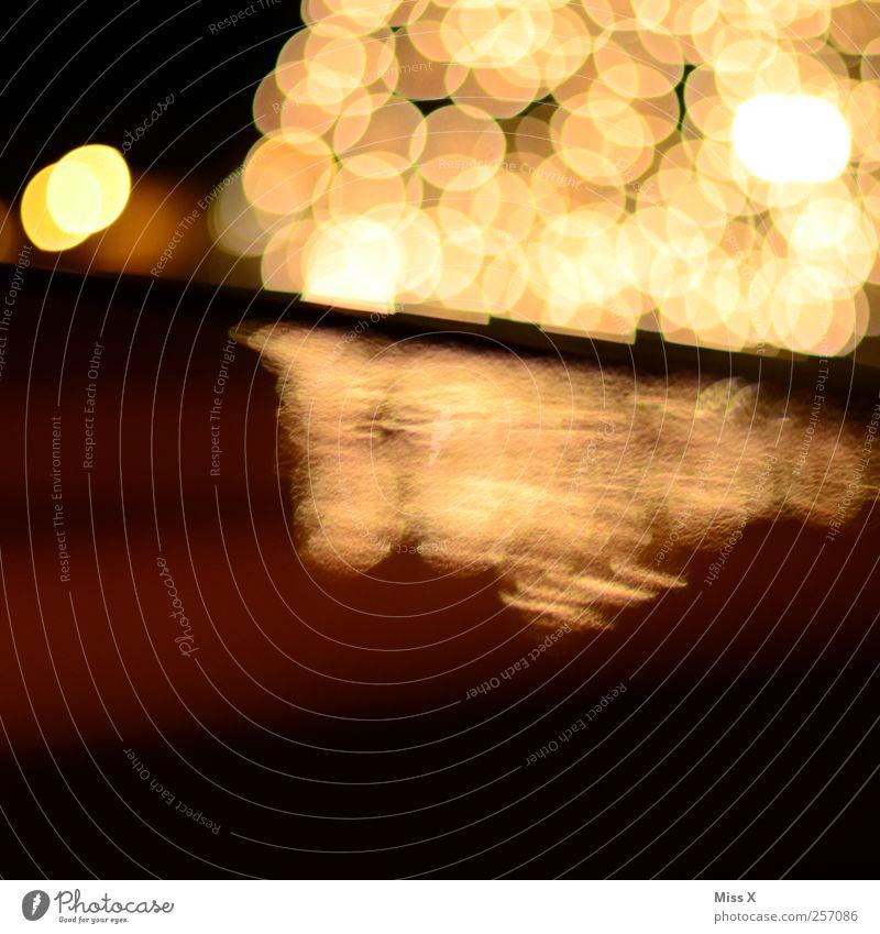 Lichterspiegel leuchten glänzend hell Weihnachtsbaum Beleuchtung Lampe Weihnachtsbeleuchtung Nahaufnahme Experiment Muster Menschenleer Textfreiraum unten