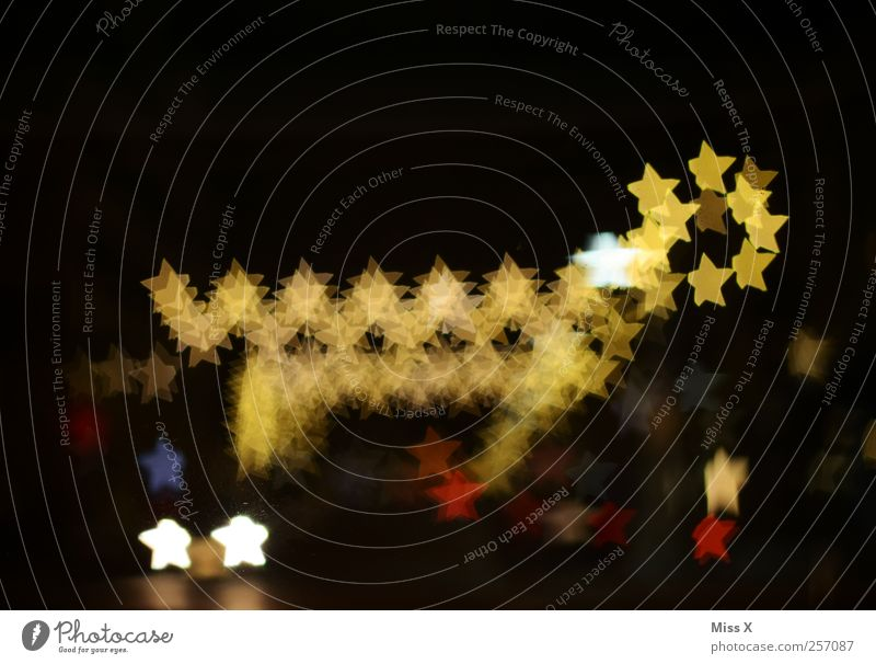 Weihnachtstier Weihnachten & Advent leuchten glänzend Lichterkette Stern (Symbol) Weihnachtsbeleuchtung Weihnachtsdekoration Rentier Figur Beleuchtung