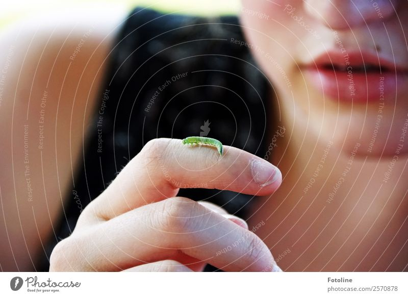 Faszination Raupe Frau Mensch Natur Jugendliche Junge Frau Sommer Hand Tier Mädchen Gesicht Erwachsene Umwelt natürlich feminin klein Kopf