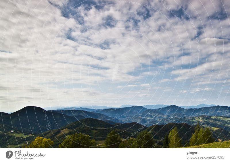 Herz will fliegen... Umwelt Natur Landschaft Himmel Wolken Sommer Berge u. Gebirge hoch Aussicht Slowenien Ferne überblicken Wald schön Farbfoto Gedeckte Farben