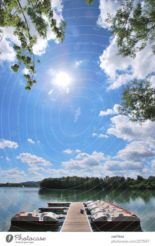 S O M M E R !!!!!!!! Himmel Natur blau Wasser grün weiß Baum Sonne Sommer Freude Einsamkeit ruhig Ferne Erholung Wärme Luft