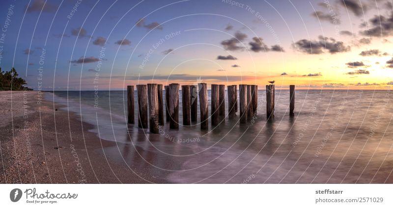 Himmel Natur blau Landschaft Meer Strand gelb Küste Abenddämmerung Anlegestelle Ruine Florida Neapel Golf von Mexico