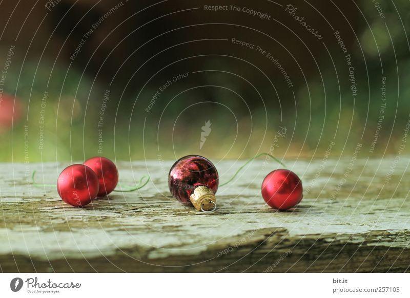 Kugellager IV Natur alt Weihnachten & Advent grün rot Winter Umwelt Landschaft Holz Stimmung Feste & Feiern liegen glänzend Häusliches Leben Dekoration & Verzierung rund