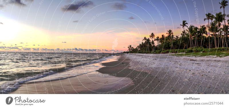 Verfallene Ruinen eines Piers am Port Royal Beach bei Sonnenuntergang Strand Meer Wellen Landschaft Wolken Küste Ferien & Urlaub & Reisen Port Royal Strand