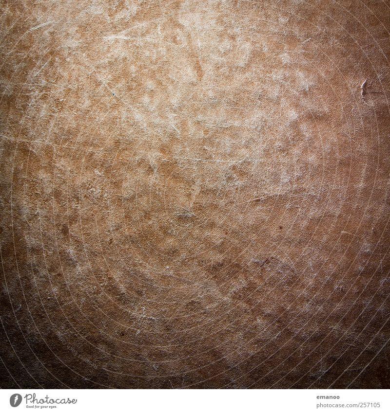 Turnkastenhaut alt braun Hintergrundbild Streifen weich Tierhaut Kuh Kasten Loch Riss Sport-Training Leder Turnen Faser Vignettierung Kratzer
