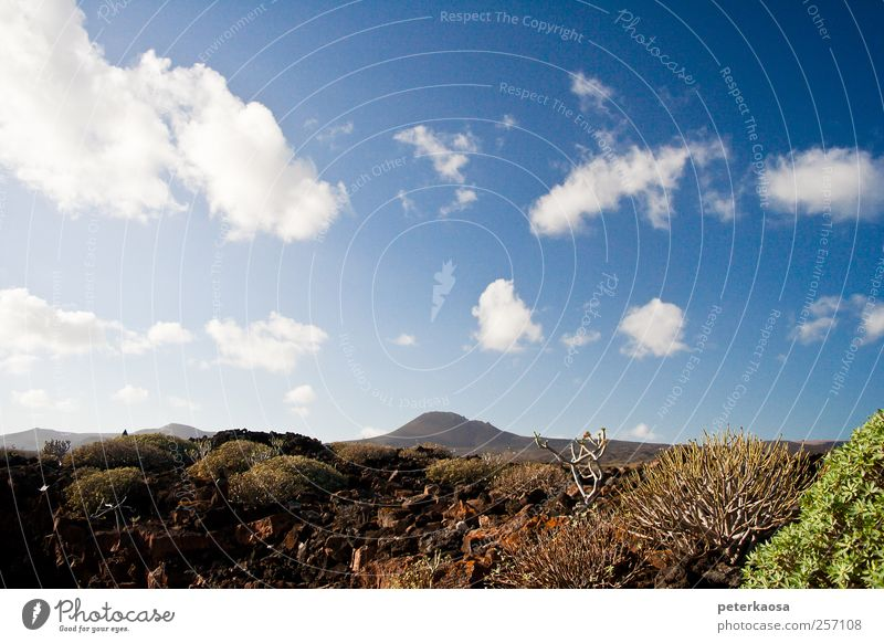 Vulkaninsel Lanzarote Himmel Natur blau Pflanze Wolken ruhig Umwelt Landschaft Berge u. Gebirge Denken braun Horizont Erde Felsen laufen Insel