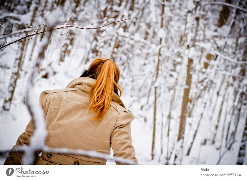 Winterdream Haare & Frisuren Freizeit & Hobby Ausflug Schnee Winterurlaub feminin Junge Frau Jugendliche Rücken 1 Mensch 18-30 Jahre Erwachsene Natur Baum Wald
