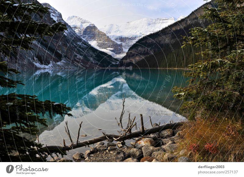 Lake Louise, Alberta, Kanada Landschaft Wasser Erde Wolken Herbst Schönes Wetter Baum Berge u. Gebirge Seeufer Wahrzeichen Ferien & Urlaub & Reisen Farbfoto