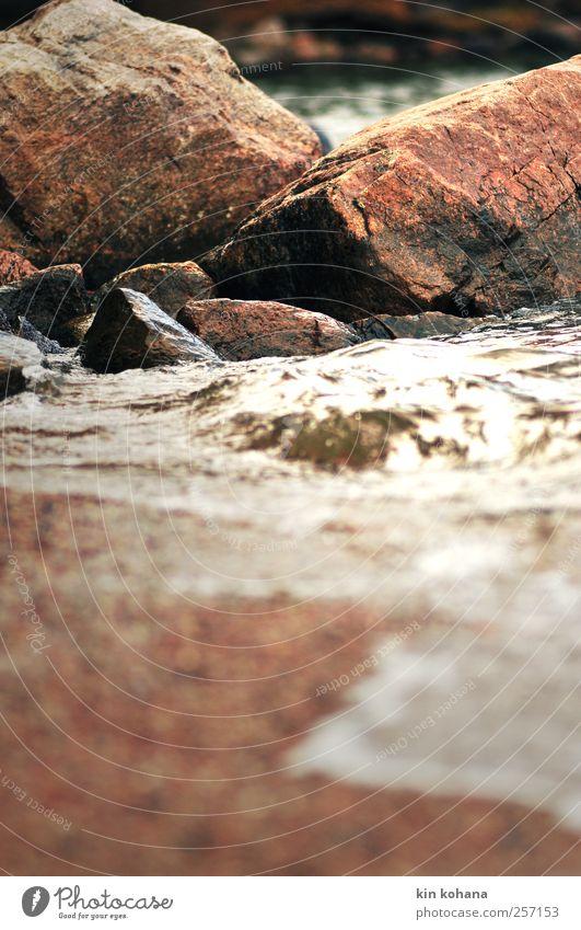 brandung Natur Urelemente Wasser Sommer Herbst Küste Seeufer Strand Bucht Stein hören braun gelb gold grau Einsamkeit Idylle Vergänglichkeit Brandung Wellen