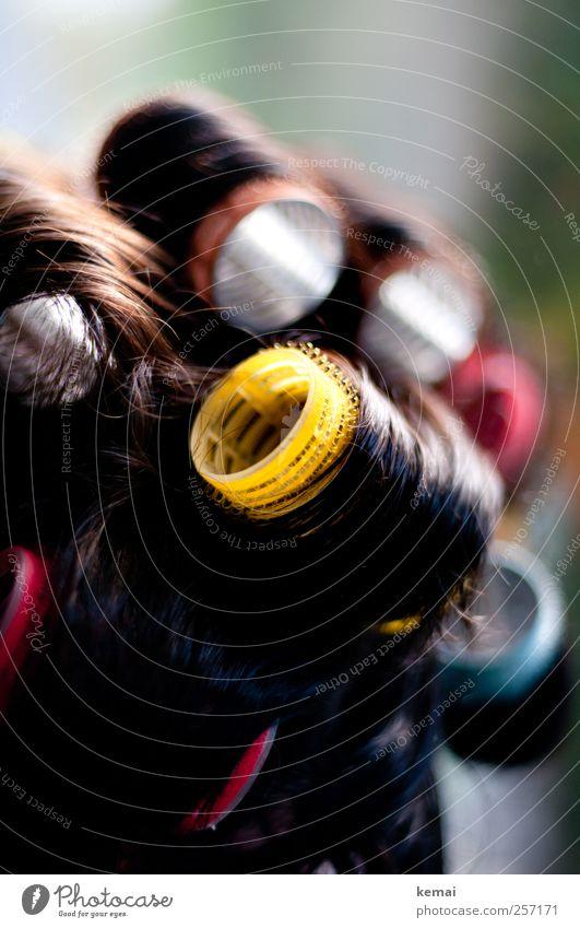 Fürs Fest schön machen Lifestyle Haare & Frisuren Mensch feminin Mutter Erwachsene Leben Kopf 1 45-60 Jahre schwarzhaarig brünett kurzhaarig Locken