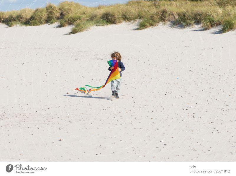 Drachenausflug Freizeit & Hobby Spielen Ferien & Urlaub & Reisen Ausflug Sommerurlaub Kind 1 Mensch 1-3 Jahre Kleinkind Wind Strand Stranddüne frei