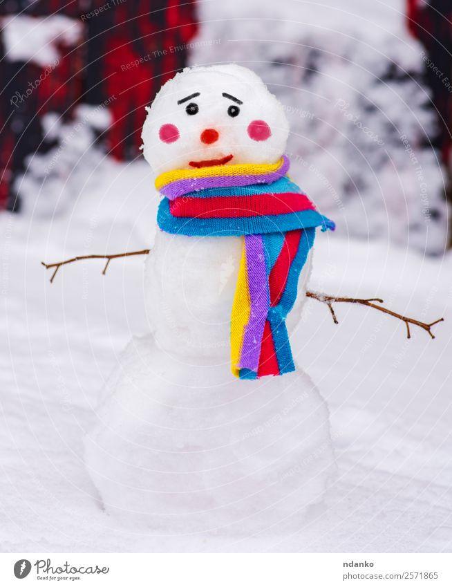 Schneemann mit einem bunten Schal Freude Winter Natur Lächeln stehen Fröhlichkeit klein niedlich mehrfarbig weiß Ferien & Urlaub & Reisen Tradition Hintergrund