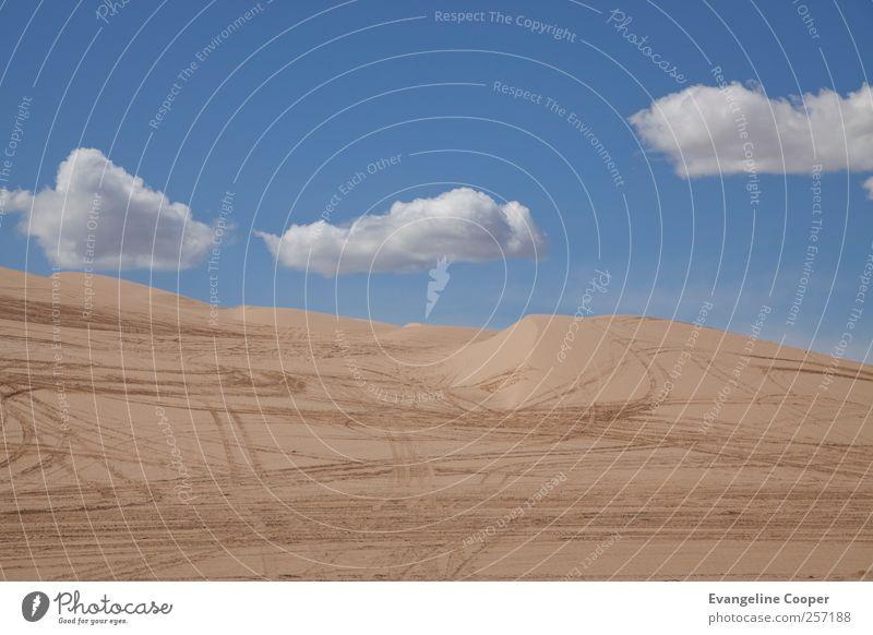 Sonora II Ferien & Urlaub & Reisen Landschaft Abenteuer Tourismus Wüste Amerika Sightseeing 2011
