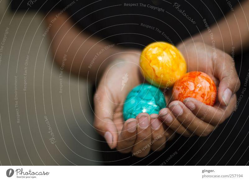 Frohe Weihnachten and A Happy New Year !!! Kindheit Arme Hand Finger 1 Mensch mehrfarbig anbieten Präsentation Geschenk Ei festhalten zeigen Feste & Feiern
