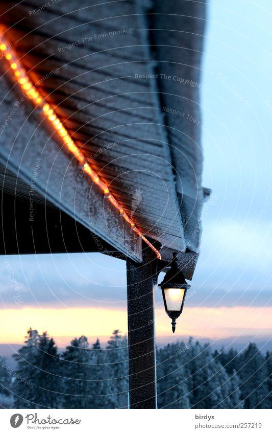 Lichterleuchten Winter Eis Frost Horizont Idylle Natur Lichterkette Laterne Dach Terrasse Abenddämmerung Nadelwald kalt Traufe Himmel Wolken Außenleuchte