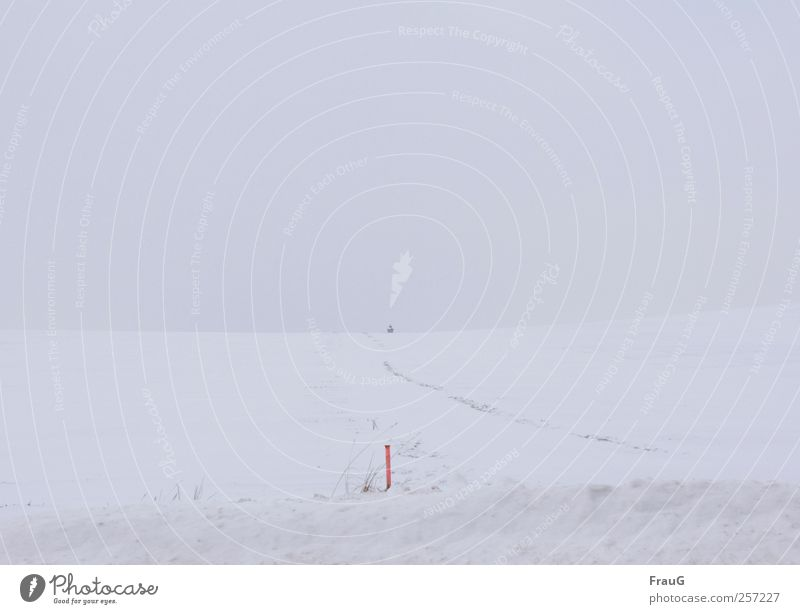 Fast nix Himmel weiß Winter Einsamkeit Ferne kalt Schnee Klima Hügel