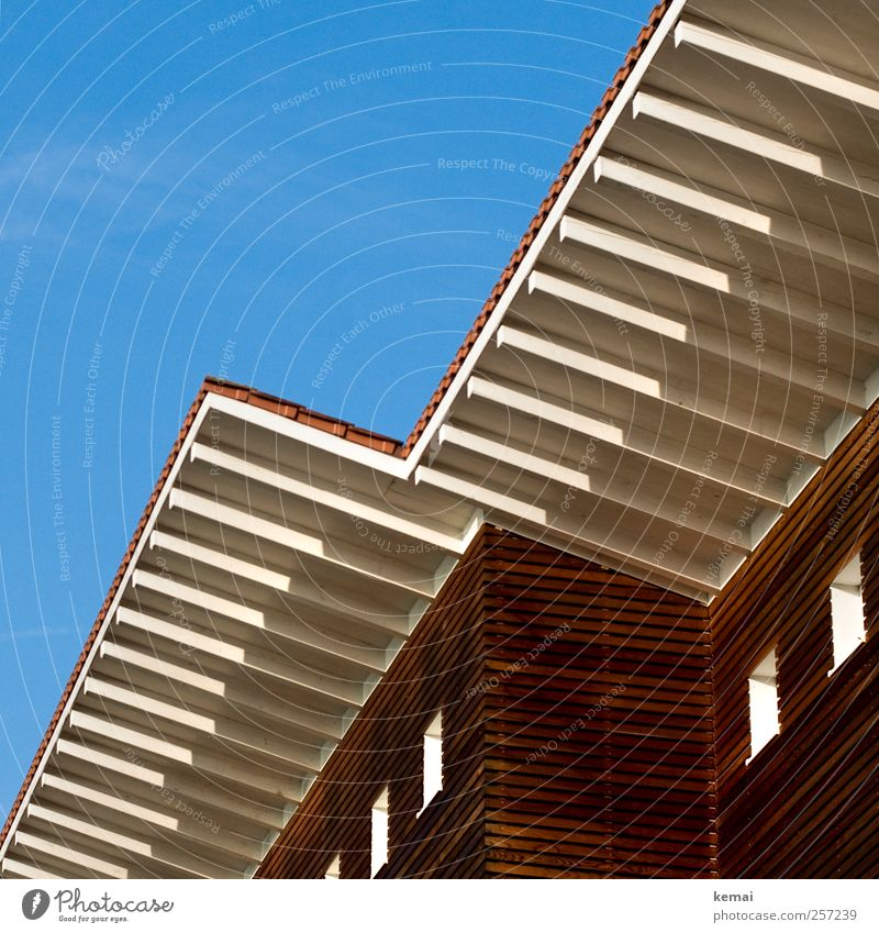 Holzhaus blau Sonne Herbst Fenster Architektur Holz Gebäude Linie braun Fassade Dach einfach Sauberkeit Bauwerk Schönes Wetter Holzbrett