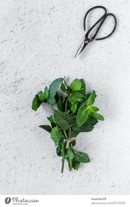 Aromatische Kräuter. Flache Verlegung. Lebensmittel Gemüse Kräuter & Gewürze Bioprodukte Vegetarische Ernährung Diät Garten Kunst Pflanze frisch lecker