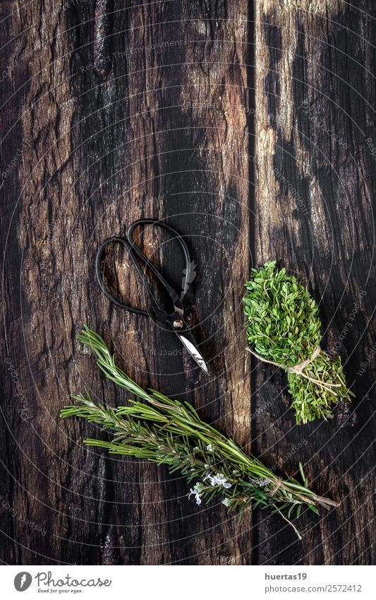 Aromatische Kräuter. Flache Verlegung Lebensmittel Gemüse Kräuter & Gewürze Garten Kunst Pflanze frisch lecker natürlich oben sauer grün Küchenkräuter