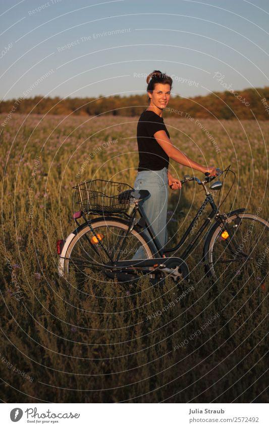 Feld Fahrrad Frau Sonnenlicht Fahrradfahren feminin Erwachsene 1 Mensch 30-45 Jahre Natur Himmel Sommer Schönes Wetter Blume Gras Wald T-Shirt Jeanshose brünett
