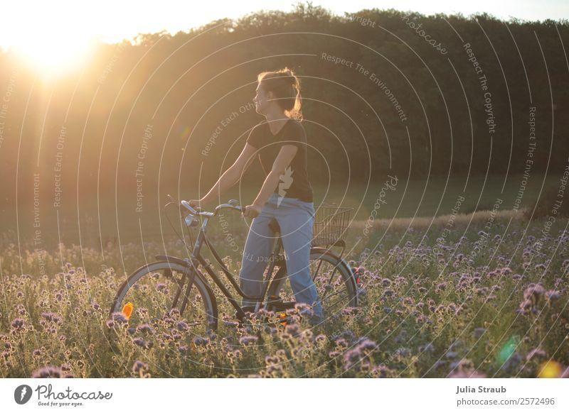 sonnenuntergang Frau Fahrrad Ausflug Fahrradtour Erwachsene 1 Mensch 30-45 Jahre Sommer Schönes Wetter Blume Gras phazelie Feld Wald T-Shirt Jeanshose brünett
