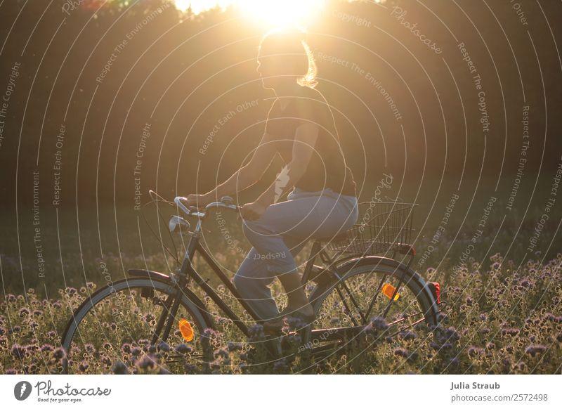 Fahrrad Sonnenuntergang Blumen Fahrradfahren feminin Frau Erwachsene 1 Mensch 30-45 Jahre Natur Landschaft Sonnenaufgang Sonnenlicht Sommer Schönes Wetter Wärme