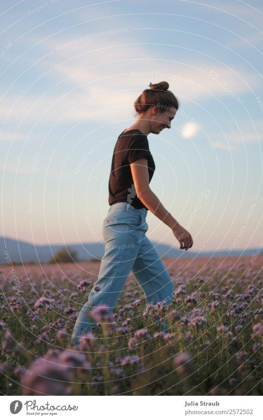 Frau Laufen Blumenfeld feminin Erwachsene 1 Mensch 30-45 Jahre Natur Himmel Sonnenaufgang Sonnenuntergang Sommer Gras phazelien Feld T-Shirt Jeanshose brünett