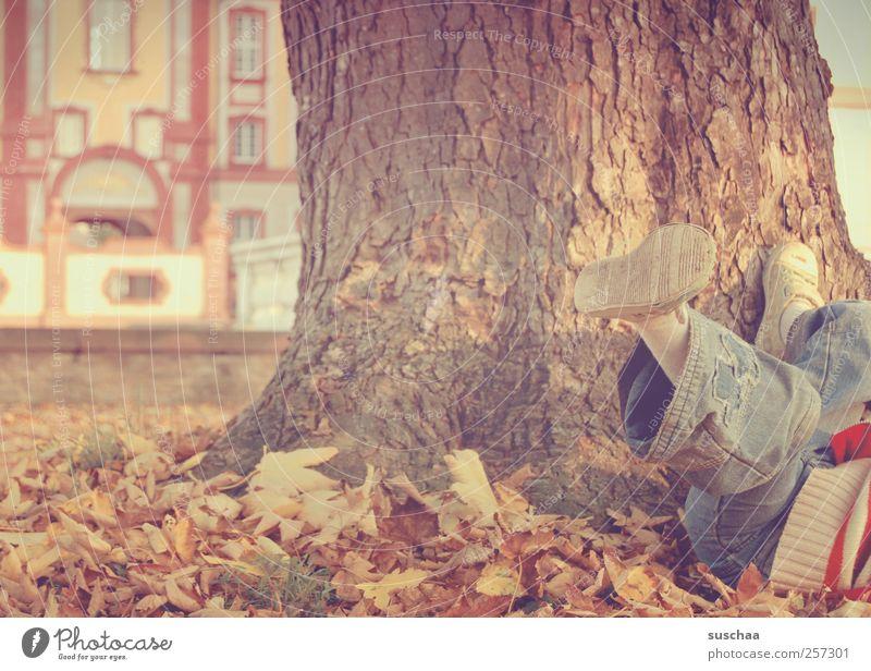 pause Kind Kindheit Beine Fuß 1 Mensch 3-8 Jahre Umwelt Natur Herbst Baum Park Jeanshose Bewegung frei Freizeit & Hobby Spielen Baumstamm Herbstlaub Blatt