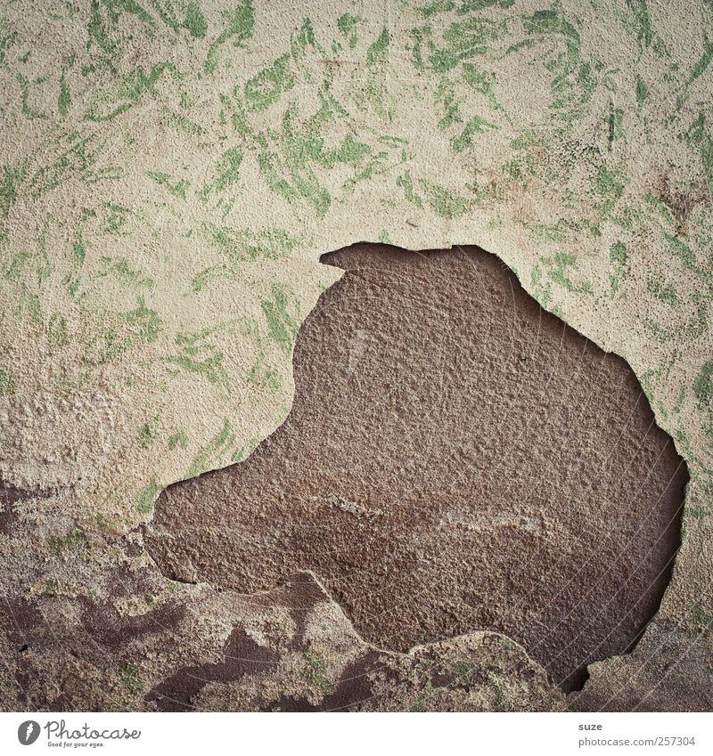 Schweinskopf Kunst Kunstwerk Mauer Wand Fassade alt authentisch dreckig kaputt lustig stagnierend Verfall Vergänglichkeit Demontage verfallen obskur Putz