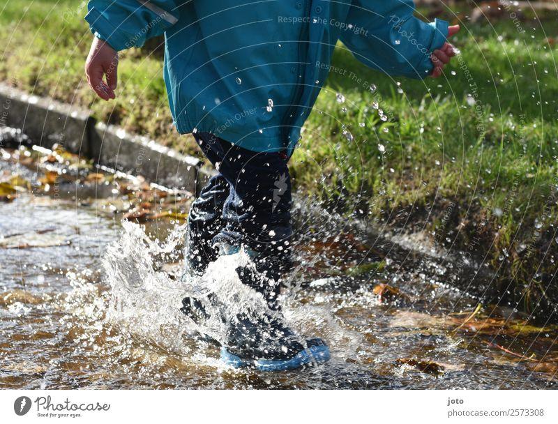 Pfützenzeit Freude Ausflug Kind Kleinkind Kindheit 1 Mensch 1-3 Jahre Wassertropfen Herbst Blatt Gummistiefel Bewegung rennen frei nass Lebensfreude