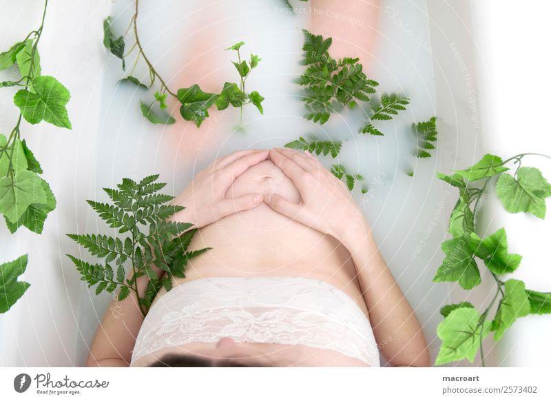 Milchbadshooting schwangerschaftsshooting babybauchshooting pflanzlich Pflanze grün körperteil Frau weiblich teilakt Photo-Shooting natürlich nackt Bauch