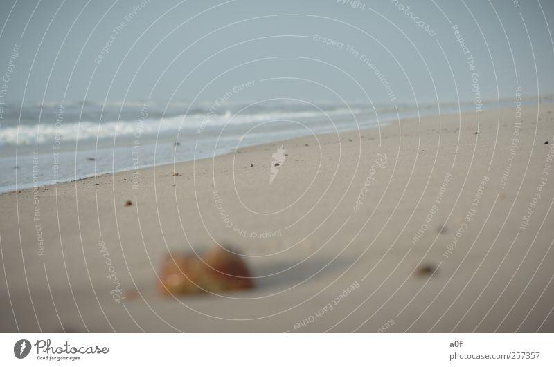 mare Natur Wasser Himmel Horizont Herbst Wetter Wind Wellen Küste Strand Nordsee Meer Sand alt blau braun gelb Erholung Umwelt Ferien & Urlaub & Reisen Farbfoto