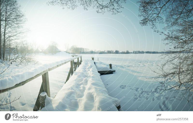 Der Steg Himmel Natur Ferien & Urlaub & Reisen blau Sonne Baum Landschaft Haus Winter Schnee Wege & Pfade See Horizont Schönes Wetter Seeufer gefroren
