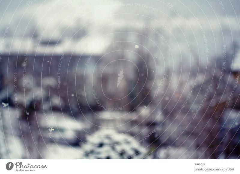 Schneeflocken Natur Winter Schneefall kalt klein Farbfoto Außenaufnahme Menschenleer Tag Unschärfe Schwache Tiefenschärfe